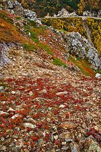 Skyline Trail Palette