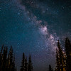 milky way in the trees