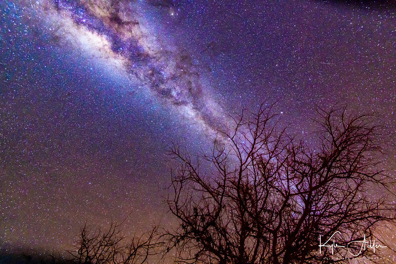 We were so fortunate to travel during a new moon in winter to the Atacama Desert.  There's no better combination of time and place for viewing (and photographing) the Milky Way.