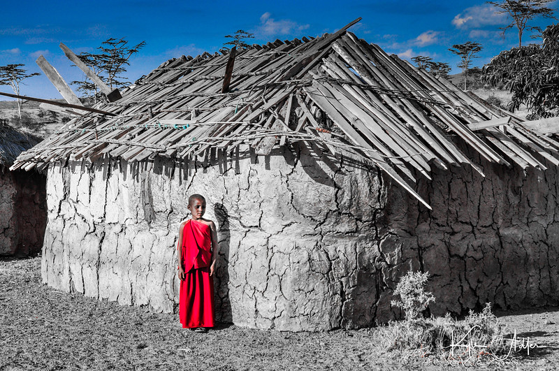 This young Maasai boy took me by the hand and led me from the boma area of the village to his family's new hut.  Previously semi-nomadic, he had never lived in a permanent house before.  His pride in having a place to call home was evident.