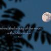 rumi moon