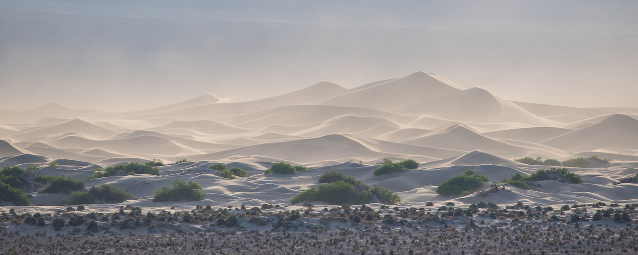 "CALIFORNIA 1617<br /> <br /> ""Mesquite Flat Dunes""<br /> <br /> Death Valley National Park"