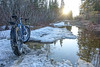 "BIKING 09864<br /> <br /> ""Tough spring ride on Rengo Road""<br /> <br /> Grand Portage, MN"