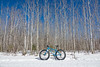 "BIKING 01863<br /> <br /> ""Ice Cream Truck and Aspens"""