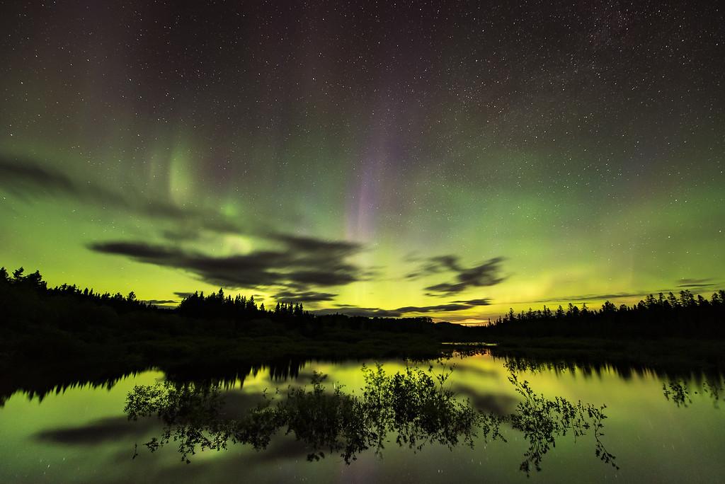 """AURORA 8044<br /> <br /> """"Surprise Aurora!""""<br /> <br /> Northern Lights on June 6, 2016"""