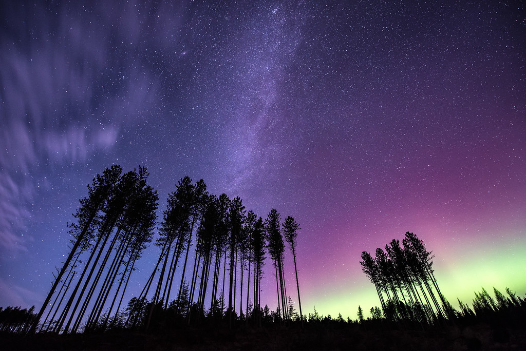 "AURORA 4135<br /> <br /> ""The Majesty of the Minnesota Night Sky""<br /> <br /> Northern Lights along the Sawbill Trail on November 3, 2015 -  Superior National Forest, MN"