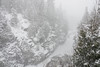 """""""Blizzard on the Pigeon River Gorge"""""""