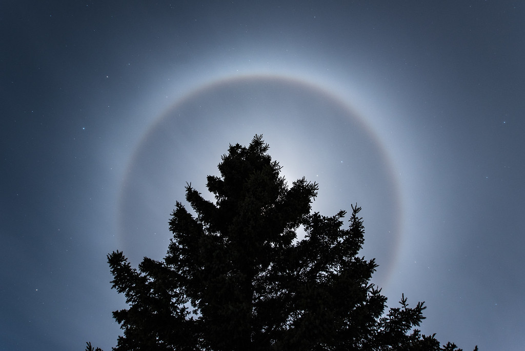 """""""Moon Ring and Spruce Tree"""""""