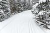 "CROSS COUNTRY SKI 00045<br /> <br /> ""Cross Country Ski Heaven""<br /> <br /> Central Gunflint Ski Trails - Gunflint Trail, MN"