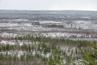 """Early Winter on the Gunflint Hills"""