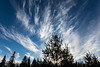 """FOREST 00951<br /> <br /> """"Surreal February Sunset""""<br /> <br /> Grand Portage, MN"""
