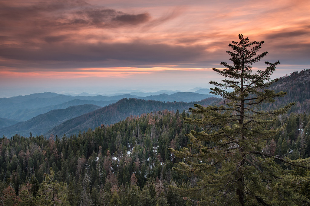 "CALIFORNIA 2345<br /> <br /> ""Foothills Sunset""<br /> <br /> Sequoia National Park"