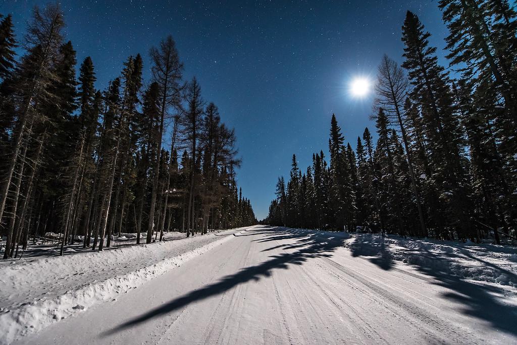 """MOONLIGHT 6755<br /> <br /> """"Moonlight Shadows, Sawbill Trail""""<br /> <br /> Superior National Forest, MN"""