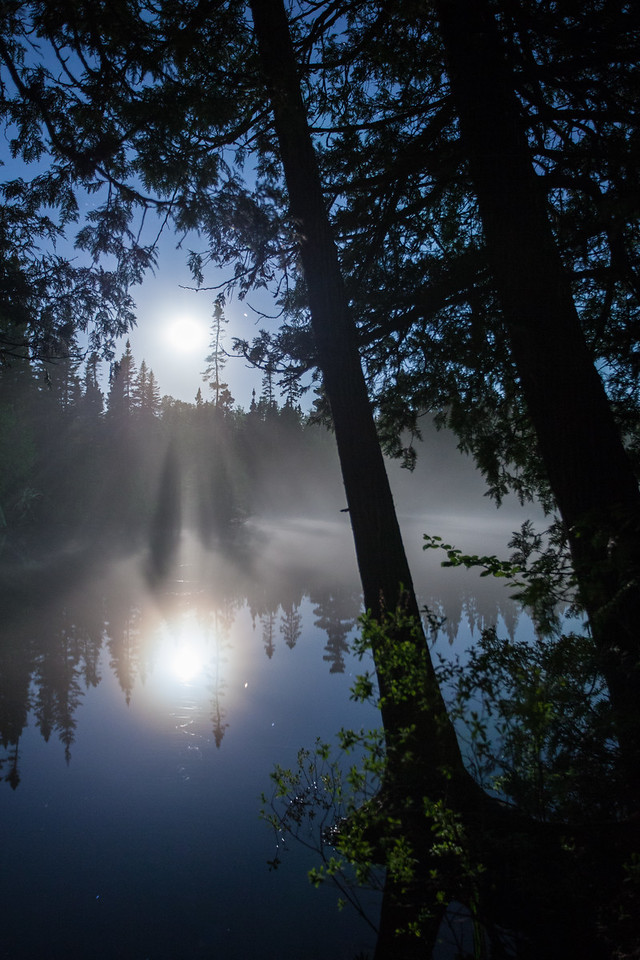"MOONLIGHT 7341<br /> <br /> ""Moonlight Cedars on Devilfish Lake""<br /> <br /> Grand Portage State Forest - Cook County, MN"