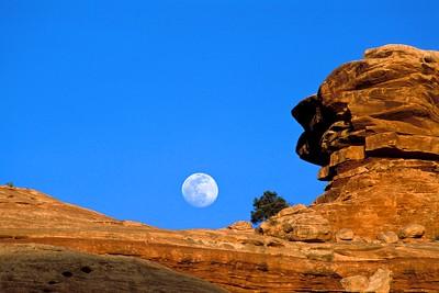 Slickrock Moonrise