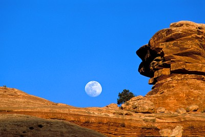 Slickrock Moonrise