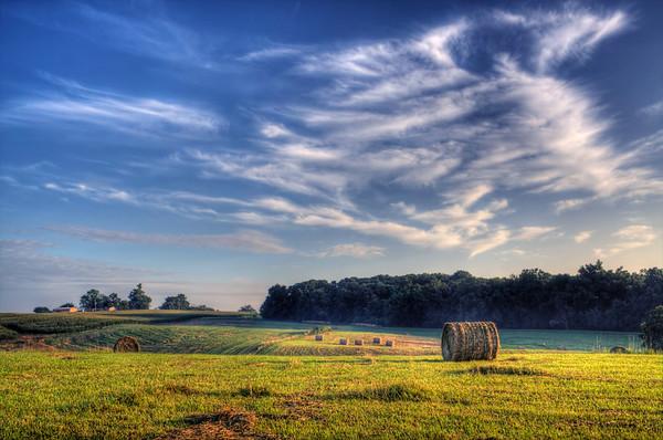 Early Morning Hay Field