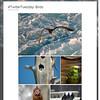 #TwitterTuesday: Bird