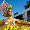 Carnival Gauteng_120az