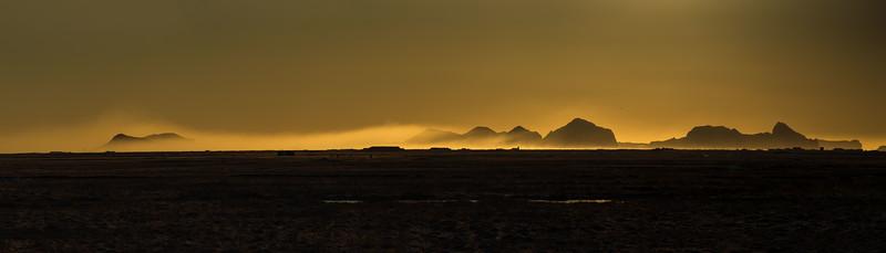 Artic Mist