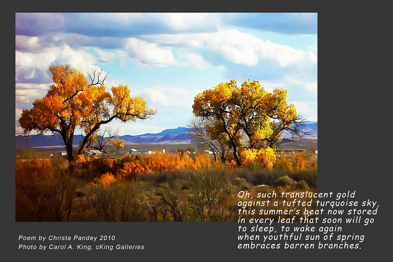 """Photo without poem available at:<br />  <a href=""""http://ckinggalleries.smugmug.com/Land-and-Sky/Just-My-Nature/12069799_umse8#898785137_ciuLv"""">http://ckinggalleries.smugmug.com/Land-and-Sky/Just-My-Nature/12069799_umse8#898785137_ciuLv</a>"""