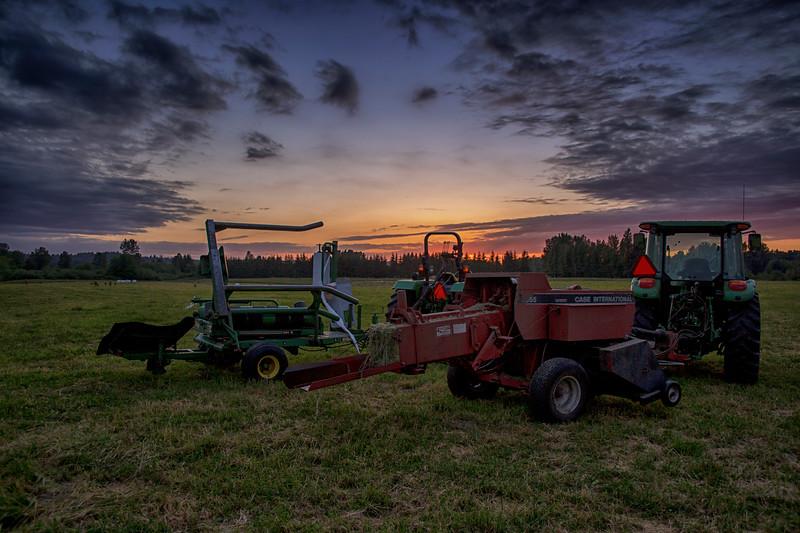 Making Hay Meadowbrook Farm Elk 6-11-15