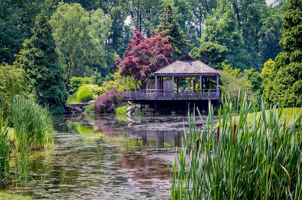Japanese tea house at Brookside Gardens, Washington DC