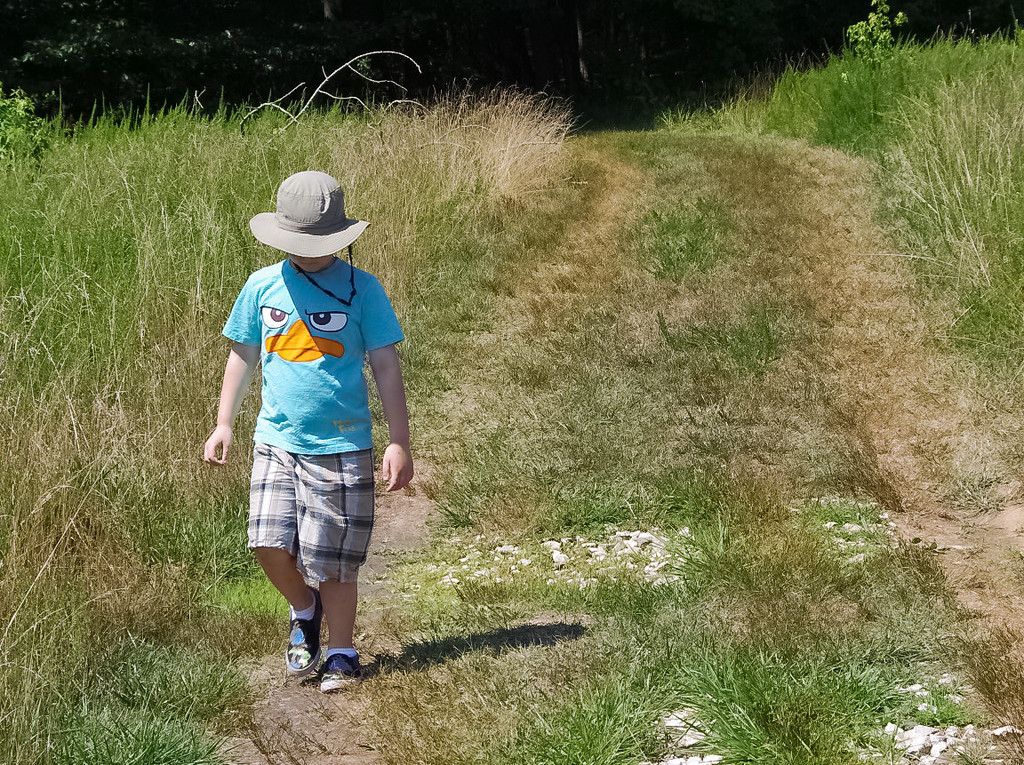 Walking the Grassland Between Lakes at the Patuxent Research Refuge