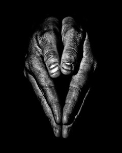 portrait of hands