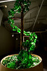 "Video of Grolsch Glass Bottle Spiral Topiary<br /> Created for NEXT Art Fair as part of Art Chicago<br />  <a href=""http://www.youtube.com/watch?v=-4eht74NizY"">http://www.youtube.com/watch?v=-4eht74NizY</a>"