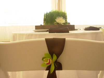 The bride & groom's chair had a chocolate brown grosgrain ribbon w/a single blossom of mini green cymbidium orchid