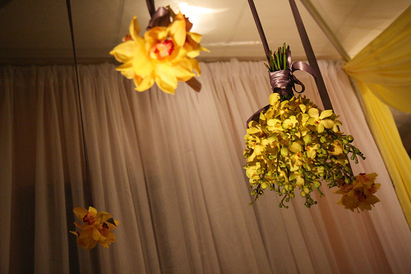 hanging bundles of mokara orchids and cymbidium orchids w/grey ribbon hung from the center