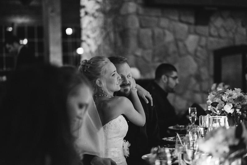 Amanda & Adam's winter wedding reception at the Pavilion at Orchard Ridge Farms. Wedding photographer– Ryan Davis Photography – Rockford, Illinois.