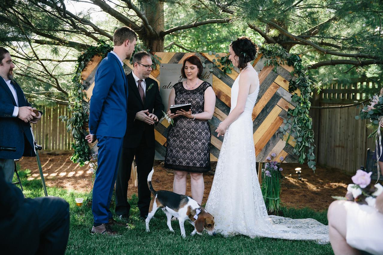 Plainfield, IL Backyard D.I.Y. wedding photography