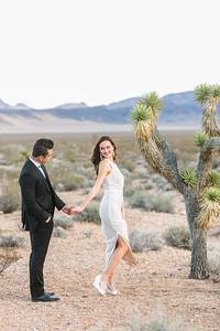 Greta & Antenor's bridal photo session at Seven Magic Mountains, Las Vegas, NV 2.8.17.
