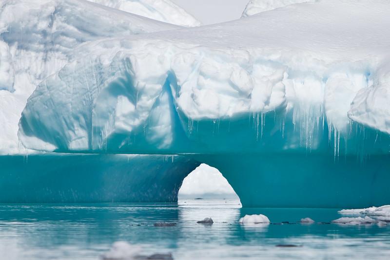 Icebergs Up Close