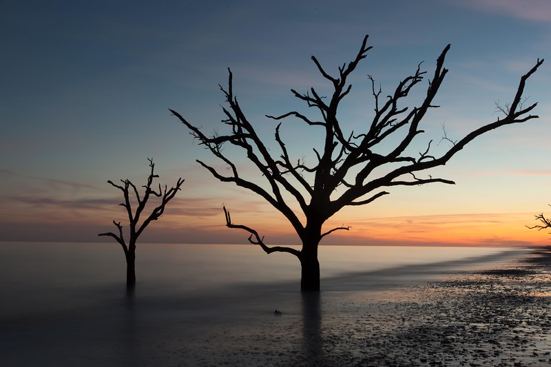 Botany Bay,South Carolina  121231-11