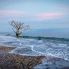 Botany Bay,South Carolina  121231-10