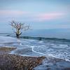 Botany Bay,South Carolina  121231-10