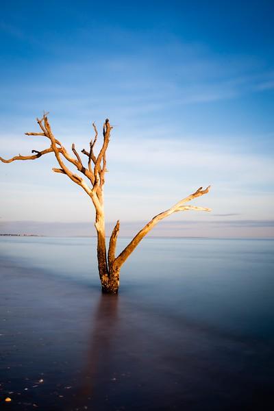 Botany Bay,South Carolina  121231-2