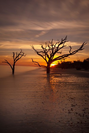 Botany Bay,South Carolina  121231-8