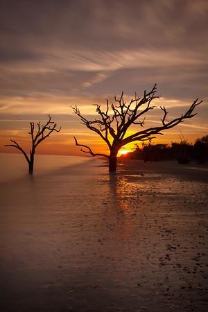 Botany Bay,South Carolina  121231-8