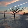 Botany Bay,South Carolina  121231-9