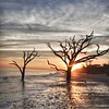 Botany Bay,South Carolina  121231-7