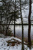 NJ Pine Barrens. December 2013