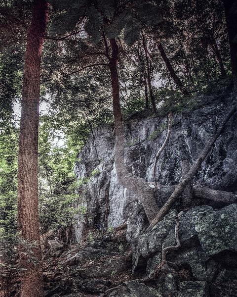 Sleepy Hollow Landscapes: Raven Rock. Rockefeller State Park Preserve, Sleepy Hollow, Pleasantville, Westchester County, New York