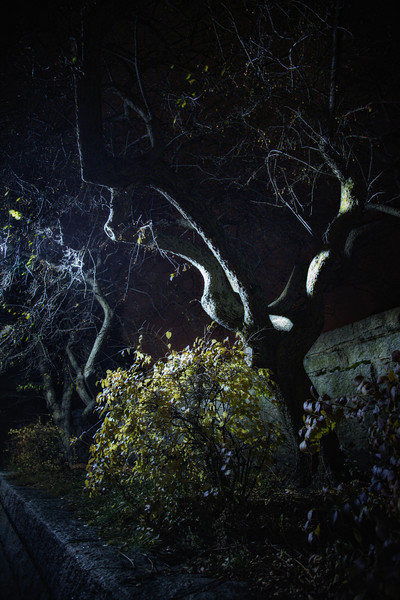 Outside the Old Burial Ground at Night