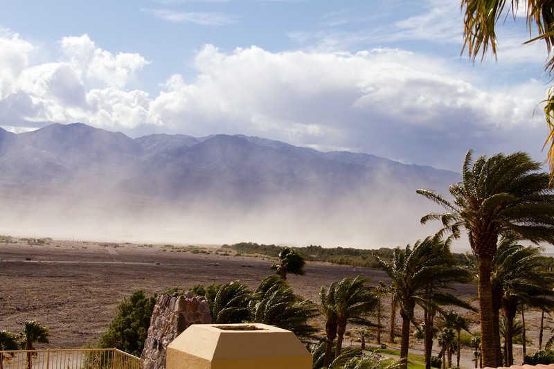 Furnace Creek Resort. A sandstorm arose while we were eating lunch. Notice the force on the palm trees leaves.