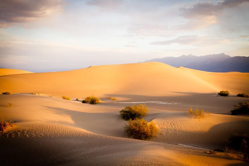 Mesquite Flat Sand Dunes...Sunrise Color