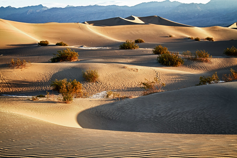 Mesquite Flat Sand Dunes........similar to a scene a few photos back, but with emphasis on the ripples and shadows below the eliptical peak.